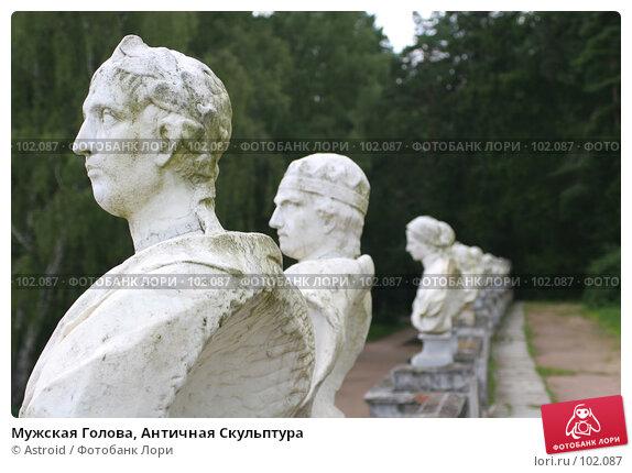Мужская Голова, Античная Скульптура, фото № 102087, снято 25 октября 2016 г. (c) Astroid / Фотобанк Лори