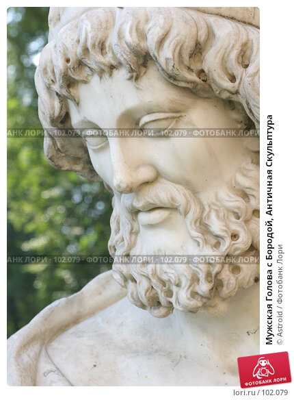 Мужская Голова с Бородой, Античная Скульптура, фото № 102079, снято 24 февраля 2017 г. (c) Astroid / Фотобанк Лори