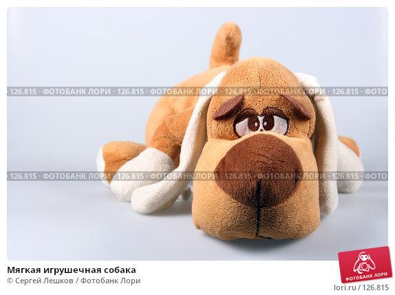Купить «Мягкая игрушечная собака», фото № 126815, снято 25 ноября 2007 г. (c) Сергей Лешков / Фотобанк Лори
