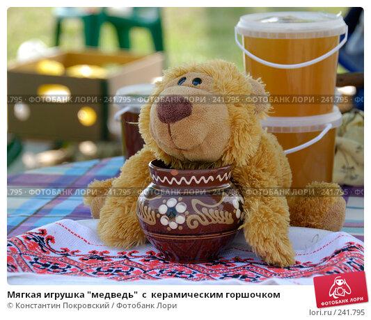 "Мягкая игрушка ""медведь""  с  керамическим горшочком, фото № 241795, снято 19 августа 2007 г. (c) Константин Покровский / Фотобанк Лори"
