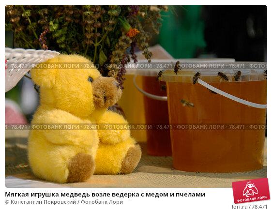Мягкая игрушка медведь возле ведерка с медом и пчелами, фото № 78471, снято 19 августа 2007 г. (c) Константин Покровский / Фотобанк Лори