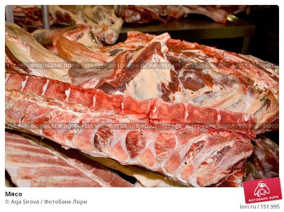 Мясо, фото № 151995, снято 13 декабря 2007 г. (c) Asja Sirova / Фотобанк Лори