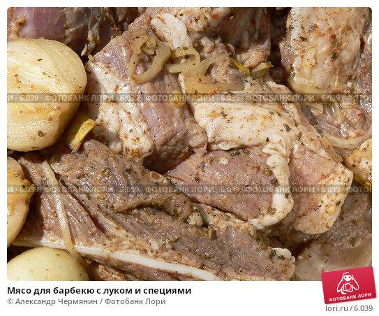 Мясо для барбекю с луком и специями, фото № 6039, снято 10 июня 2006 г. (c) Александр Чермянин / Фотобанк Лори