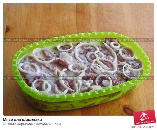 Мясо для шашлыка, фото № 236095, снято 6 декабря 2016 г. (c) Ольга Хорькова / Фотобанк Лори