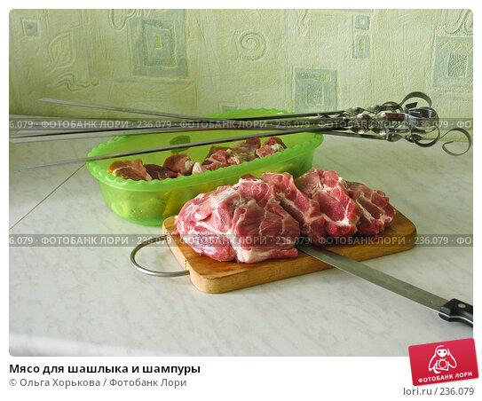 Мясо для шашлыка и шампуры, фото № 236079, снято 24 апреля 2017 г. (c) Ольга Хорькова / Фотобанк Лори