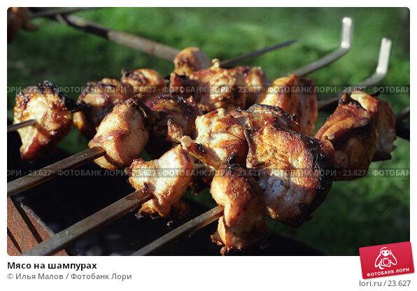 Мясо на шампурах, фото № 23627, снято 27 марта 2017 г. (c) Илья Малов / Фотобанк Лори