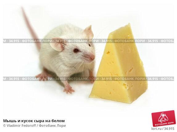 Мышь и кусок сыра на белом, фото № 34915, снято 21 апреля 2007 г. (c) Vladimir Fedoroff / Фотобанк Лори