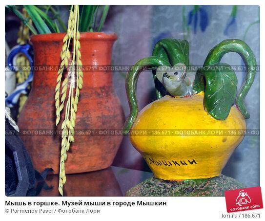 Купить «Мышь в горшке. Музей мыши в городе Мышкин», фото № 186671, снято 19 апреля 2018 г. (c) Parmenov Pavel / Фотобанк Лори