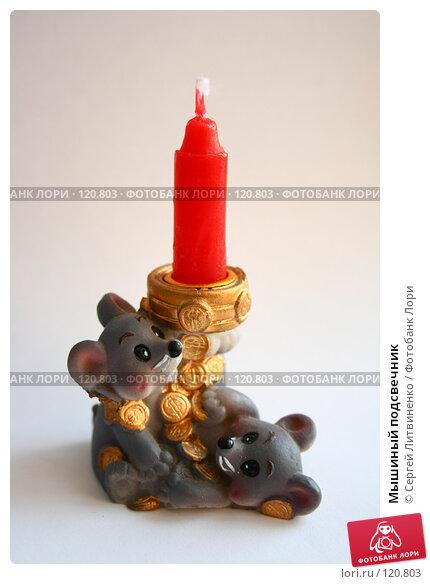 Купить «Мышиный подсвечник», фото № 120803, снято 20 ноября 2007 г. (c) Сергей Литвиненко / Фотобанк Лори