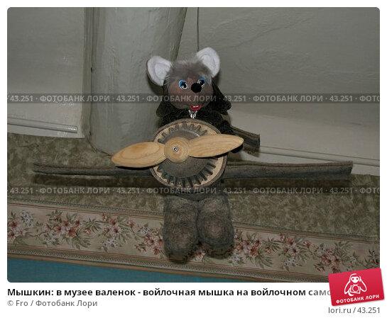 Мышкин: в музее валенок - войлочная мышка на войлочном самолете под потолком, фото № 43251, снято 29 апреля 2006 г. (c) Fro / Фотобанк Лори