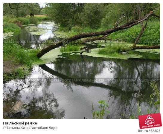 На лесной речке, эксклюзивное фото № 62823, снято 10 июля 2007 г. (c) Татьяна Юни / Фотобанк Лори