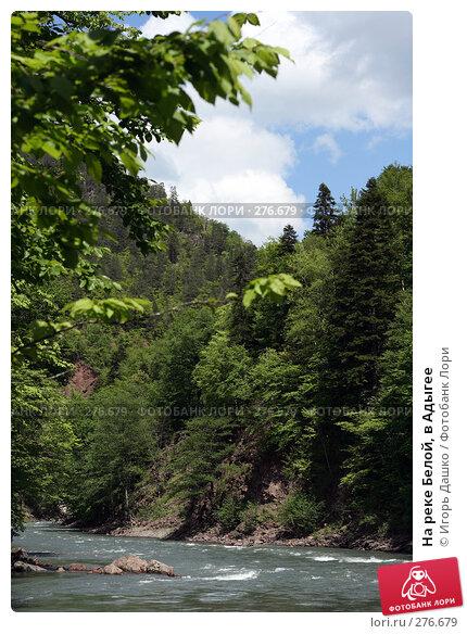 Купить «На реке Белой, в Адыгее», фото № 276679, снято 2 мая 2008 г. (c) Игорь Дашко / Фотобанк Лори