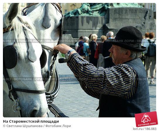 На Староместской площади, фото № 186083, снято 7 мая 2006 г. (c) Светлана Шушпанова / Фотобанк Лори