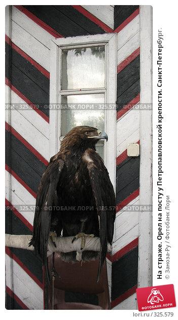 На страже. Орел на посту у Петропавловской крепости. Санкт-Петербург., фото № 325579, снято 12 июня 2008 г. (c) Заноза-Ру / Фотобанк Лори