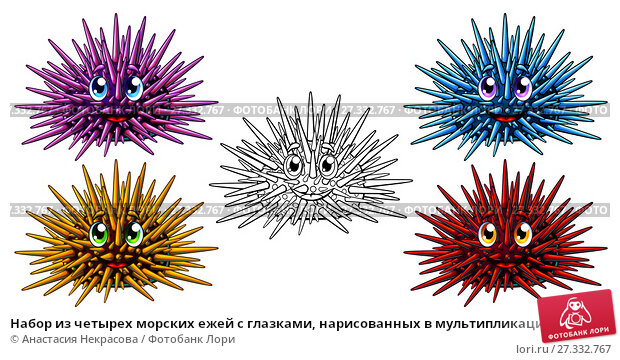 Купить «Набор из четырех морских ежей с глазками, нарисованных в мультипликационном стиле, красного, голубого, розового и желтого цвета и черного контура. Иллюстрация морских животных, изолированно на белом фоне, страница раскраски», иллюстрация № 27332767 (c) Анастасия Некрасова / Фотобанк Лори