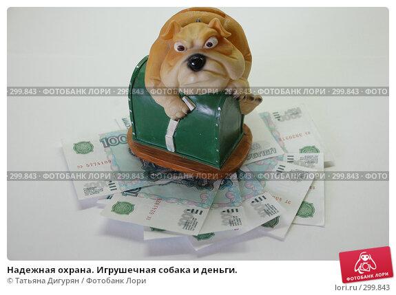 Надежная охрана. Игрушечная собака и деньги., фото № 299843, снято 26 мая 2008 г. (c) Татьяна Дигурян / Фотобанк Лори