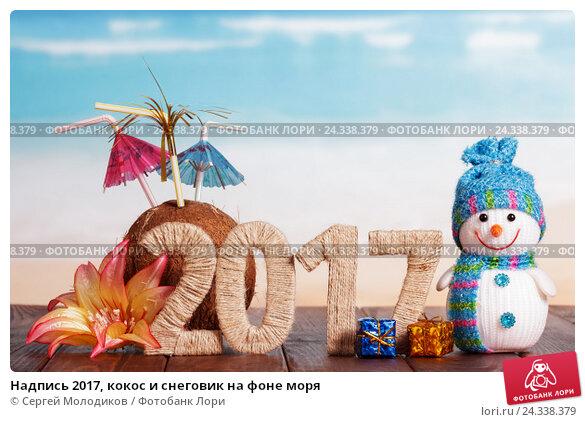 Купить «Надпись 2017, кокос и снеговик на фоне моря», фото № 24338379, снято 16 августа 2016 г. (c) Сергей Молодиков / Фотобанк Лори