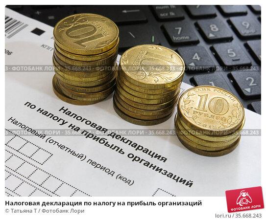 Налоговая декларация по налогу на прибыль организаций. Стоковое фото, фотограф Татьяна Т / Фотобанк Лори