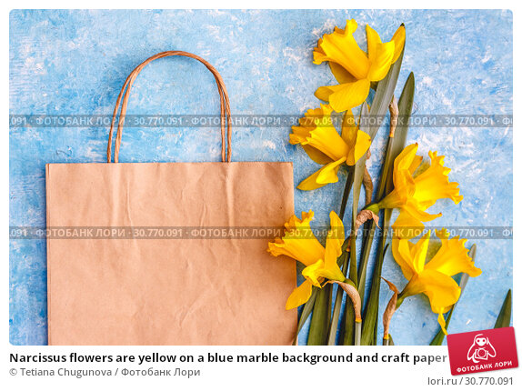 Купить «Narcissus flowers are yellow on a blue marble background and craft paper bag, there is an empty space for text. Flat Lay. View from above. Concept spring ecological natural holiday shopping», фото № 30770091, снято 11 апреля 2019 г. (c) Tetiana Chugunova / Фотобанк Лори