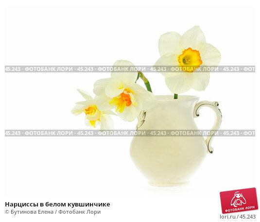 Купить «Нарциссы в белом кувшинчике», фото № 45243, снято 21 мая 2007 г. (c) Бутинова Елена / Фотобанк Лори