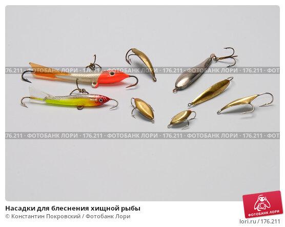 Насадки для блеснения хищной рыбы, фото № 176211, снято 15 января 2008 г. (c) Константин Покровский / Фотобанк Лори