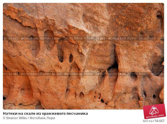 Купить «Натеки на скале из оранжевого песчаника», фото № 54667, снято 4 июля 2007 г. (c) Eleanor Wilks / Фотобанк Лори