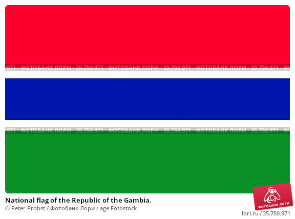 National flag of the Republic of the Gambia. (2019 год). Редакционное фото, фотограф Peter Probst / age Fotostock / Фотобанк Лори