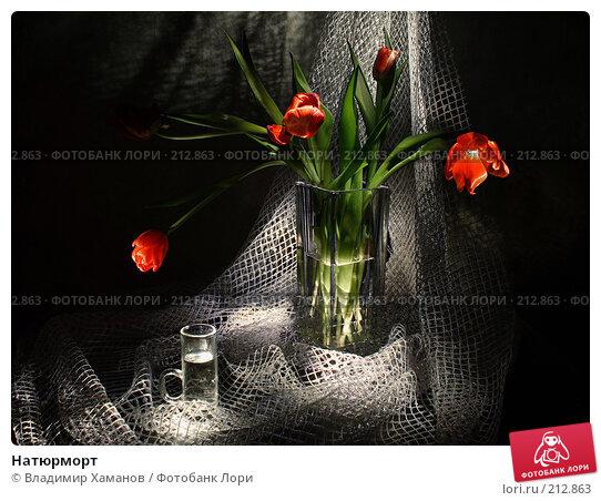 Натюрморт, фото № 212863, снято 9 марта 2006 г. (c) Владимир Хаманов / Фотобанк Лори