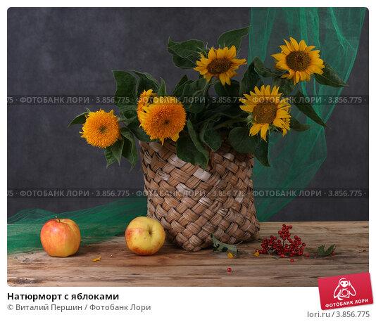 Натюрморт с яблоками. Стоковое фото, фотограф Виталий Першин / Фотобанк Лори