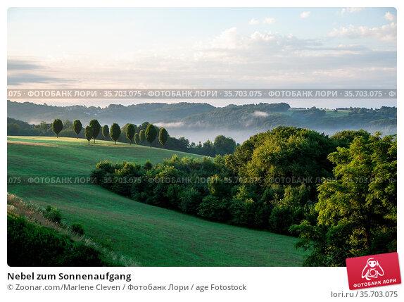 Nebel zum Sonnenaufgang. Стоковое фото, фотограф Zoonar.com/Marlene Cleven / age Fotostock / Фотобанк Лори