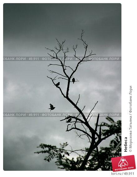 Небеса, фото № 49911, снято 19 августа 2004 г. (c) Морозова Татьяна / Фотобанк Лори