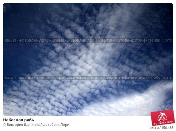 Небесная рябь, фото № 156455, снято 16 августа 2007 г. (c) Виктория Щепкина / Фотобанк Лори
