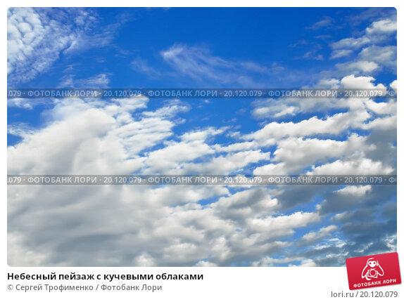 Купить «Небесный пейзаж с кучевыми облаками», фото № 20120079, снято 13 августа 2015 г. (c) Сергей Трофименко / Фотобанк Лори