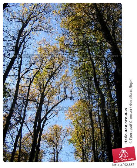 Небо над осенью, фото № 92887, снято 30 сентября 2007 г. (c) Григорий Стоякин / Фотобанк Лори