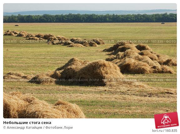 Небольшие стога сена, фото № 160835, снято 18 августа 2007 г. (c) Александр Катайцев / Фотобанк Лори
