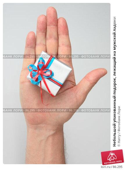 Небольшой упакованный подарок, лежащий на мужской ладони, фото № 86295, снято 22 июня 2007 г. (c) Harry / Фотобанк Лори