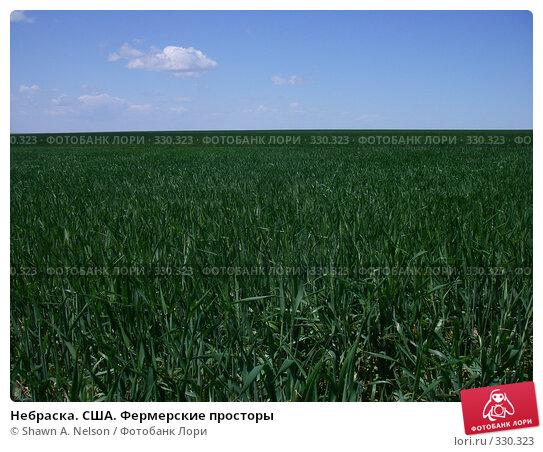 Купить «Небраска. США. Фермерские просторы», фото № 330323, снято 30 мая 2008 г. (c) Shawn A. Nelson / Фотобанк Лори
