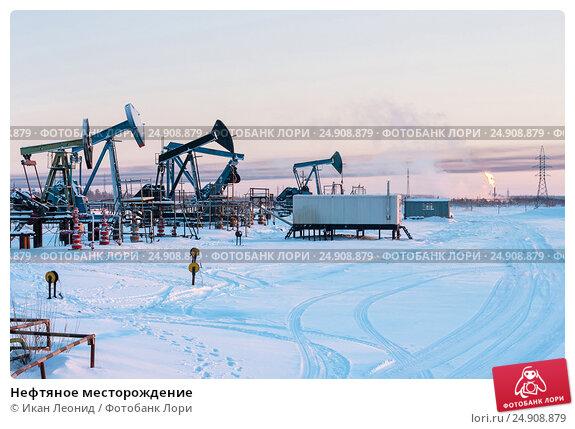 Купить «Нефтяное месторождение», фото № 24908879, снято 2 января 2011 г. (c) Икан Леонид / Фотобанк Лори