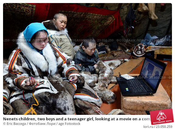 Купить «Nenets children, two boys and a teenager girl, looking at a movie on a computer inside their tent / Chum. The girl is also sewing reindeer skin / fur....», фото № 23050259, снято 27 апреля 2016 г. (c) age Fotostock / Фотобанк Лори