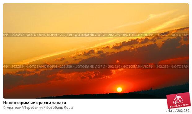 Неповторимые краски заката, фото № 202239, снято 24 августа 2007 г. (c) Анатолий Теребенин / Фотобанк Лори