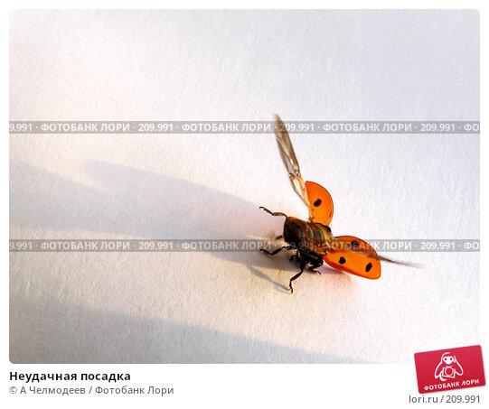 Неудачная посадка, фото № 209991, снято 13 октября 2006 г. (c) A Челмодеев / Фотобанк Лори