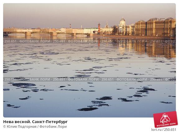 Нева весной. Санкт-Петербург, фото № 250651, снято 23 апреля 2006 г. (c) Юлия Селезнева / Фотобанк Лори