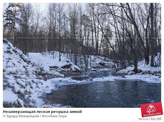 Купить «Незамерзающая лесная речушка зимой», фото № 322295, снято 2 января 2008 г. (c) Эдуард Межерицкий / Фотобанк Лори
