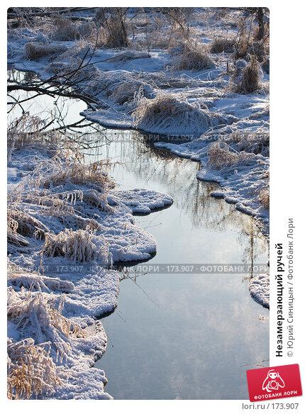 Незамерзающий ручей, фото № 173907, снято 8 января 2008 г. (c) Юрий Синицын / Фотобанк Лори