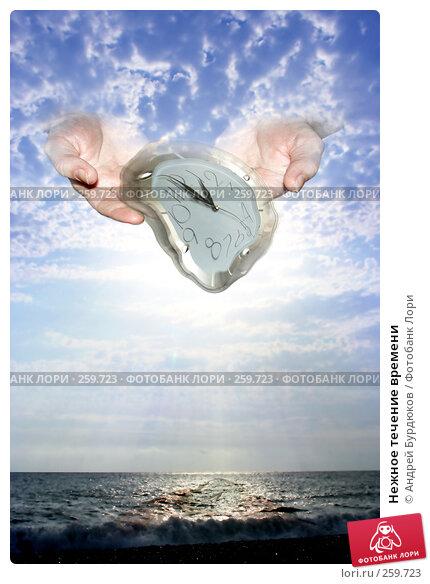 Купить «Нежное течение времени», фото № 259723, снято 8 августа 2007 г. (c) Андрей Бурдюков / Фотобанк Лори