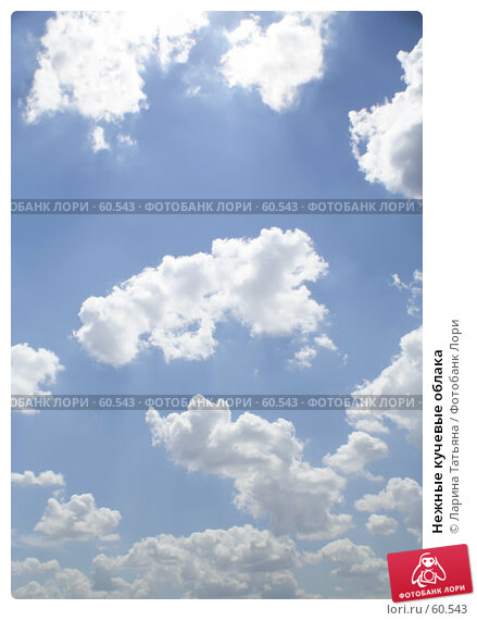 Нежные кучевые облака, фото № 60543, снято 1 июля 2007 г. (c) Ларина Татьяна / Фотобанк Лори
