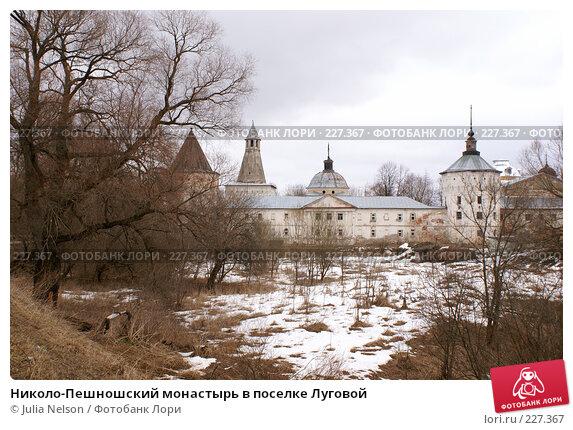 Купить «Николо-Пешношский монастырь в поселке Луговой», фото № 227367, снято 15 марта 2008 г. (c) Julia Nelson / Фотобанк Лори