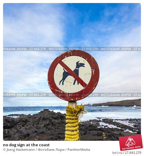 Купить «no dog sign at the coast», фото № 27843279, снято 22 февраля 2018 г. (c) PantherMedia / Фотобанк Лори