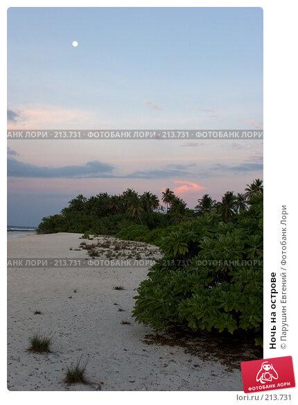 Ночь на острове, фото № 213731, снято 25 июня 2017 г. (c) Парушин Евгений / Фотобанк Лори