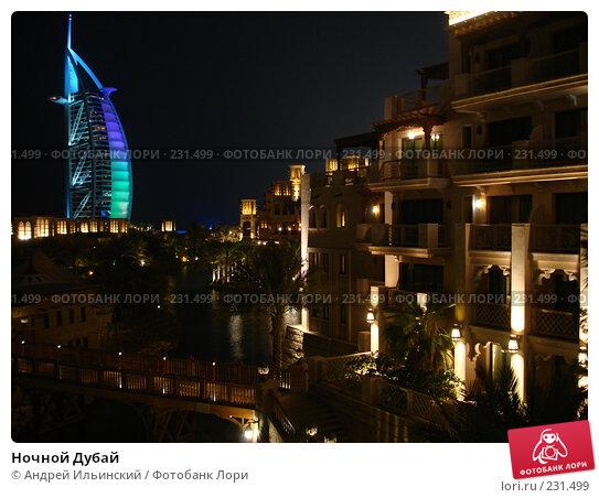 Ночной Дубай, фото № 231499, снято 4 сентября 2007 г. (c) Андрей Ильинский / Фотобанк Лори